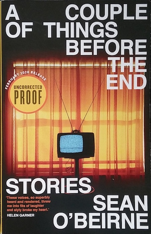A Couple of Things Before the End: Stories by Sean O'Beirne (book)
